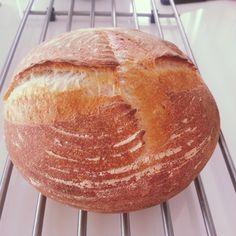 Yes, het is me gelukt! Ik heb zelf een zuurdesemstarter gemaakt en hiermee een brood gebakken. En het was eigenlijk helemaal niet zo moeilijk...