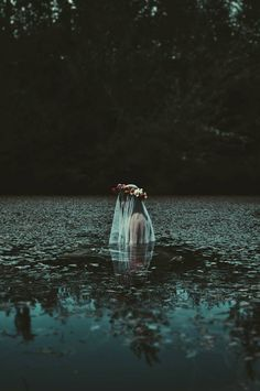 Water bride.. Would make such an interesting story! Nymphs? Forbidden love? Yes!