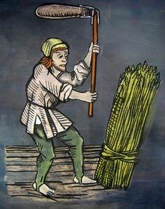 El pagès  és una persona que té com a ofici treballar les terres.