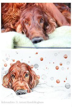 Nach Fotovorlage: Tierportrait Hund (Irish Red Setter Flynn von Hundebloghaus). Aquarell auf Zeichenpapier. Handgemalt von Aram und Abra.