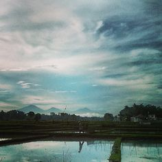 Aí, do nada, você vê uma cena assim... (Bali, Indonésia)