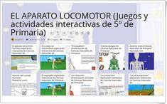 """""""10 juegos y actividades interactivas para el estudio de EL APARATO LOCOMOTOR en 5º de Primaria"""""""