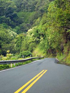 the narrow road to Hana, Maui....I biked this, back in the day....all the way to the Seven Pools. What an experience that was!