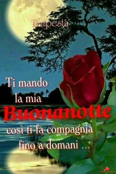 Italian Memes, Italian Phrases, Good Night Greetings, Emoticon, Good Morning, Clip Art, Facebook, Quotes, Google