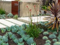 Fabulous California Landscaping Ideas Southern California Gardening Home Design Ideas Pictures Remodel - Landscaping layout suggestions could really change Succulent Landscaping, Modern Landscaping, Front Yard Landscaping, Succulents Garden, Landscaping Ideas, Modern Backyard, Landscaping Software, Succulent Plants, Landscaping Plants