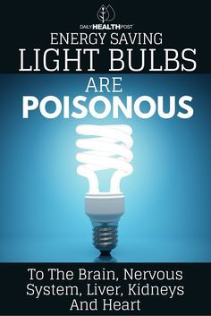 There is a growing frenzy about the safety of energy saving light bulbs, which have grown increasingly popular.