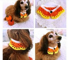 Cuellos para Perros en Crochet