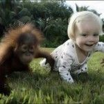 monkey with little baby run