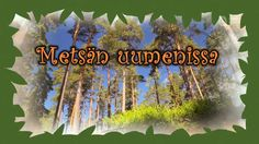 FI - Metsän uumenissa video (16 min.) 1-4 lk. Environmental Science, Forest Animals, Walking In Nature, Science And Nature, Crafts For Kids, Activities, Education, School, Plants