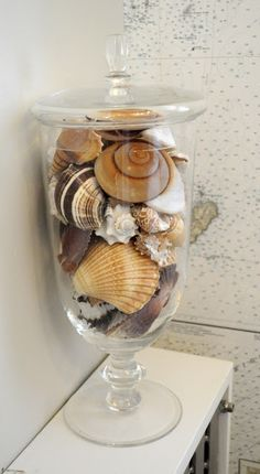 Sea shells.. like this way of putting them on display!! I have SOO many!