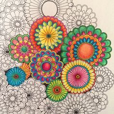 the secret garden coloring book completed - Google Search