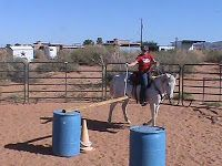 Functional horsemanship: trail obstacles Functional Horsemanship: Trail Obstacles - Art Of Equitation Horse Training Tips, Horse Tips, Extreme Trail, Horse Arena, Horse Exercises, Horse Games, Discipline, Show Horses, Trail Riding