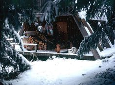 bella.'s Christmas (Winter Wonderland) ❄ images from the web