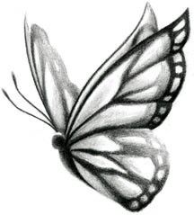 More from my site Stock Vector Simple Butterfly Sketch Simple Drawing Of Butterfly Simple Butterfly Pictures Dr… – A battle of life and death, the end of one… Butterfly Drawings Cool Art Drawings, Pencil Art Drawings, Art Drawings Sketches, Colorful Drawings, Easy Drawings, Animal Drawings, Tattoo Drawings, Tattoo Sketches, Butterfly Sketch