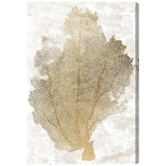 Gold Coral Fan 2' Canvas Art
