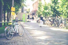 Bikes by LarisaDeac on Bike Parking, Photo Art, Sidewalk, Stock Photos, Photography, Photograph, Side Walkway, Fotografie, Walkway
