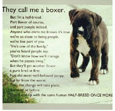 I have friends who say, Bailey isnt a dog, shes a person. This is so true!