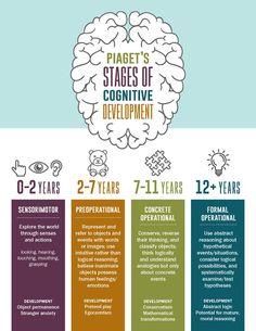 Piaget's Four Stages of Cognitive Development Infographic Piagets vier Stufen der kognitiven Entwicklung Infografik Child Development Psychology, Human Growth And Development, Child Development Stages, Toddler Development, Piaget Stages Of Development, Child Development Activities, Baby Development Chart, Development Board, Language Development