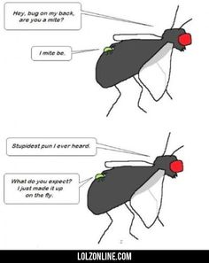 Hey, Bug On My Back, Are You A Mite...#funny #lol #lolzonline