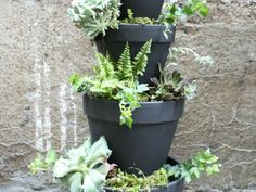 """This chic planter can be yours in just a few steps.   You will need: Seven terra cotta pots (one 6-inch, three 8-inch, one 10-inch, one 12-inch and one 14-inch), a 12.25 inch terra cotta saucer, 1 medium bag of potting soil, 1 medium bag of pea gravel or stone, a 1/2"""" 4-foot dowel, one can of black spray paint, and a saw for cutting the dowel."""