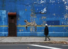 Banksy's cat (by carnagenyc)