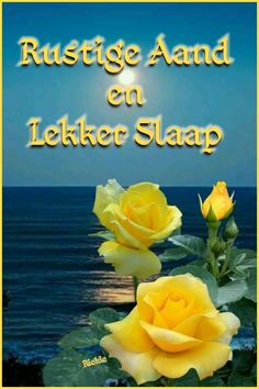 Good Night Blessings, Goeie Nag, Afrikaans Quotes, Prayer Quotes, Exotic Flowers, Deep Thoughts, Advice, Messages, Creative