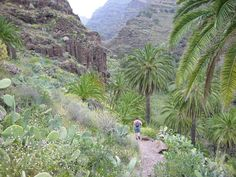 El Guro, La Gomera.  Remember you can book online at www.gomeraferienhaus.de