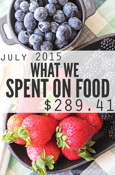 Real food doesn't have to be expensive! Watch how a family of four spends their grocery budget on real food for the month of Juy 2015. Great budget tips and money saving ideas in here too! :: DontWastetheCrumbs.com