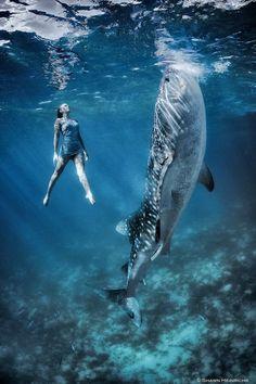 Heinrichs Whale Shark Fashion Shoot - Business Insider