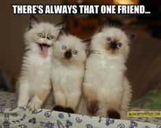There's always that one friend...The more you look at it, the funnier it gets.