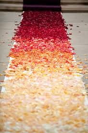 Rich, elegant reds to pale yellows to ivory color rose petals.
