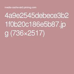 4a9e2545debece3b21f0b20c186e5b87.jpg (736×2517)