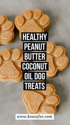 I hope your doggy enjoys this healthy & homemade coconut oil & peanut butter dog treat! Homemade Peanut Butter Coconut Oil Dog Treats : Healthy Delicious via Coconut Oil For Dogs, Coconut Peanut Butter, Coconut Oil Cookies, Peanut Oil, Recipe For Peanut Butter Dog Treats, Dogs And Peanut Butter, Dog Treat Cookie Recipe, Coconut Flour, Homemade Dog Cookies