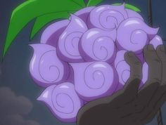 Top 6 Most Unique Devil Fruits In One Piece - Page 2 of 5 - TheAnimeScrolls