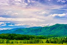 Mountain Vacations, Cades Cove, Great Smoky Mountains, Lodges, Barns, Things To Do, Wildlife, How To Plan, Travel