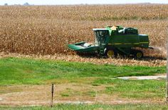 Fall in Iowa... time for the combine