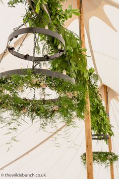 A site dedicated to Planning Your Wedding Flowers by Renowned Bristol Wedding Florists, The Wilde Bunch. A must read for any bride considering her Flowers Plan Your Wedding, Wedding Blog, Hanging Garland, Marquee Wedding, Ladders, Wedding Designs, Wedding Flowers, Scale, Designers