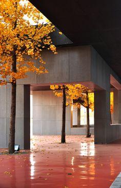 Galería de 1/2 Estadio / Interval Architects - 15