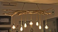 LUSTER in driftwood and vintage bulbs