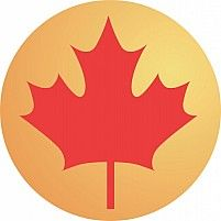 Illustration of a maple leaf in a yellow round Technical Illustration, Medical Illustration, Book Illustration, Icon Illustrations, Raster To Vector, Computer Animation, Christmas Illustration, Visual Effects, Cartoon Drawings
