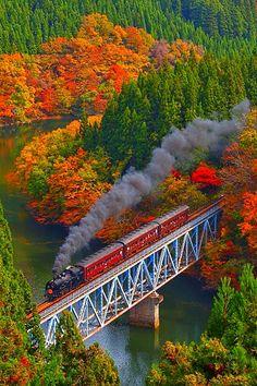 Colored leaves and steam train, JR Tadami-Line, Fukushima, Japan By Train, Train Tracks, Train Rides, Train Trip, Train Journey, Old Trains, Fukushima, Paris Hotels, Belle Photo