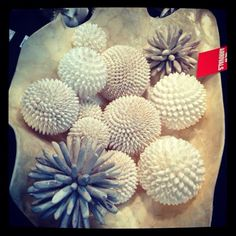 #seashells awesome gift ideas by columbus imports in sydney great for wedding decoration ideas
