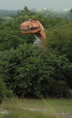 dinosaur... When I have a farm, you better believe I'm putting something like this on the property. Hilarious.