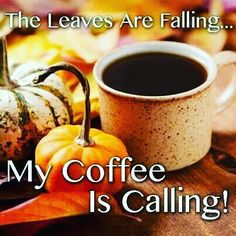 The Leaves are Falling ... My coffee is calling!!  #gloriajeanscoffees #gloriajeans #coffeeshop #fall