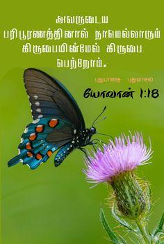 Bible Words Images, Tamil Bible Words, Jesus Photo, Animals, Animales, Animaux, Animal, Animais