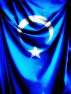 Al Bayraktan, Gök Bayrağa selam olsun. Elbet buluşacağız gavim gardaş... SahipsizVatan DoguTürkistan Turkish People, Flag, Science, Flags