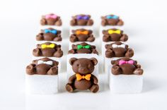 Hand decorated teddy sugar cubes with coloured fondant bows