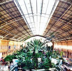 Estacion de Atocha, Madrid.
