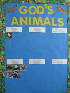 organizing the animals you learn about into the different kinds of animals