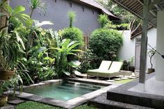 Entire home/apt in Ubud, ID. Beautiful Villa 20 minutes from Ubud Central Totally private, serviced daily. Double story with gorgeous deck upstairs. In the heart of Penestanan. Close to Alchemy, Lala Lilies and Intuitive Flow Yoga Studio Courtyard Gardens Design, Small Pools, Small Backyard, Small Pool Design, Swimming Pool Designs, Building A Swimming Pool, Small Courtyards, Beautiful Villas